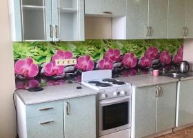 Фотография Кухня Аренда 1-комнатная квартира по адресу Кемеровская область Кемерово Юрия Двужильного, 22